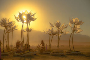 Pulse and Bloom - an honorarium grant from Burning Man for the interactive project