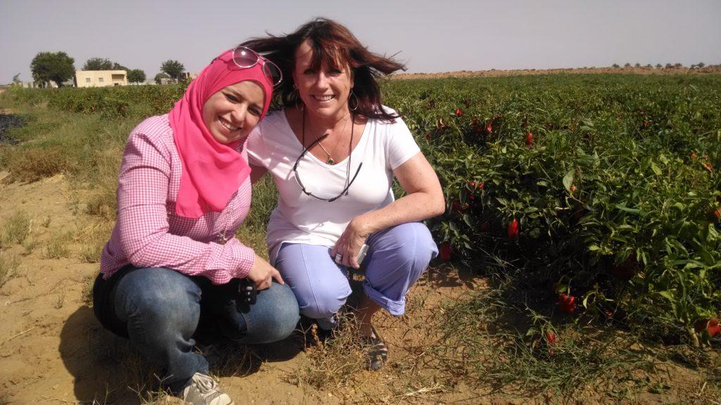 vital-voices-entrepreneur-dalia-saafan-egypt